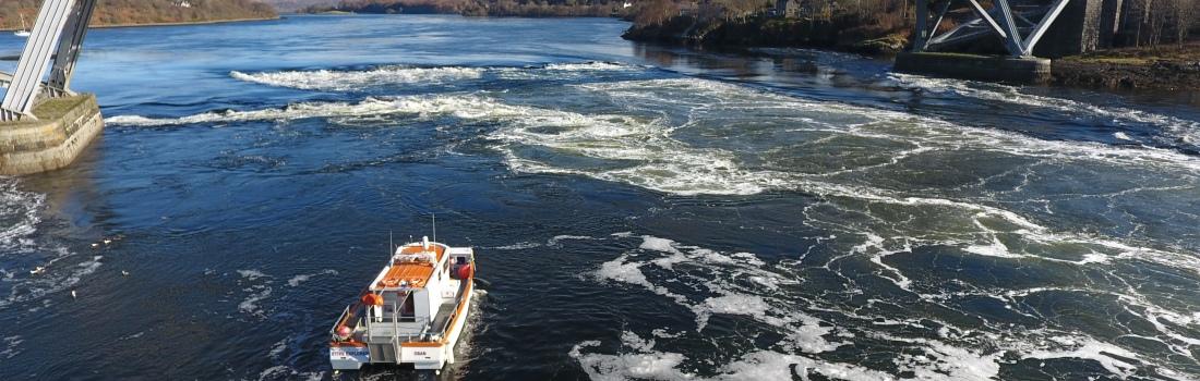 Etive Boat Trips